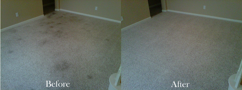 carpet-cleaning-results-1